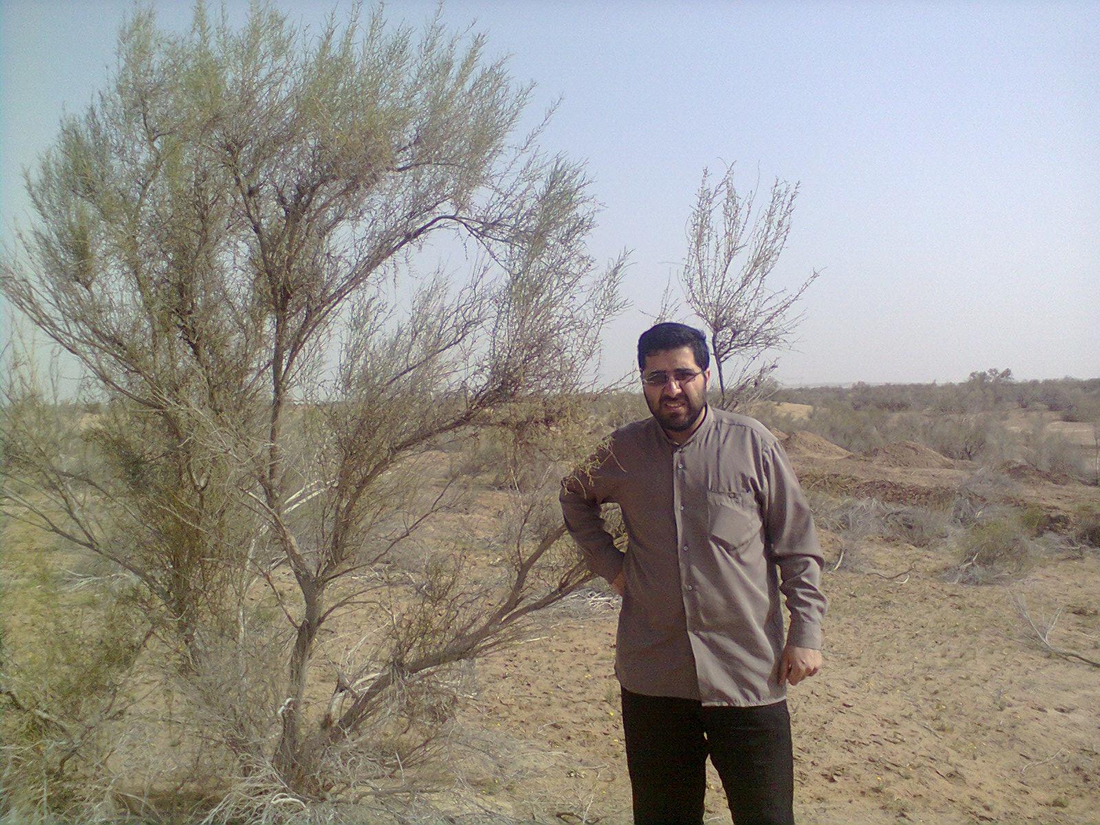 شهرستان آذرشهر